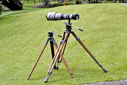 Two Miller tripods with 500mm Nikkor